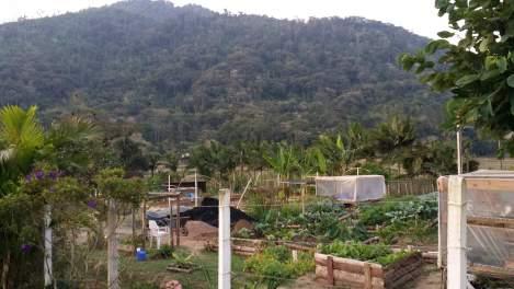 orgânicos Vila Verde