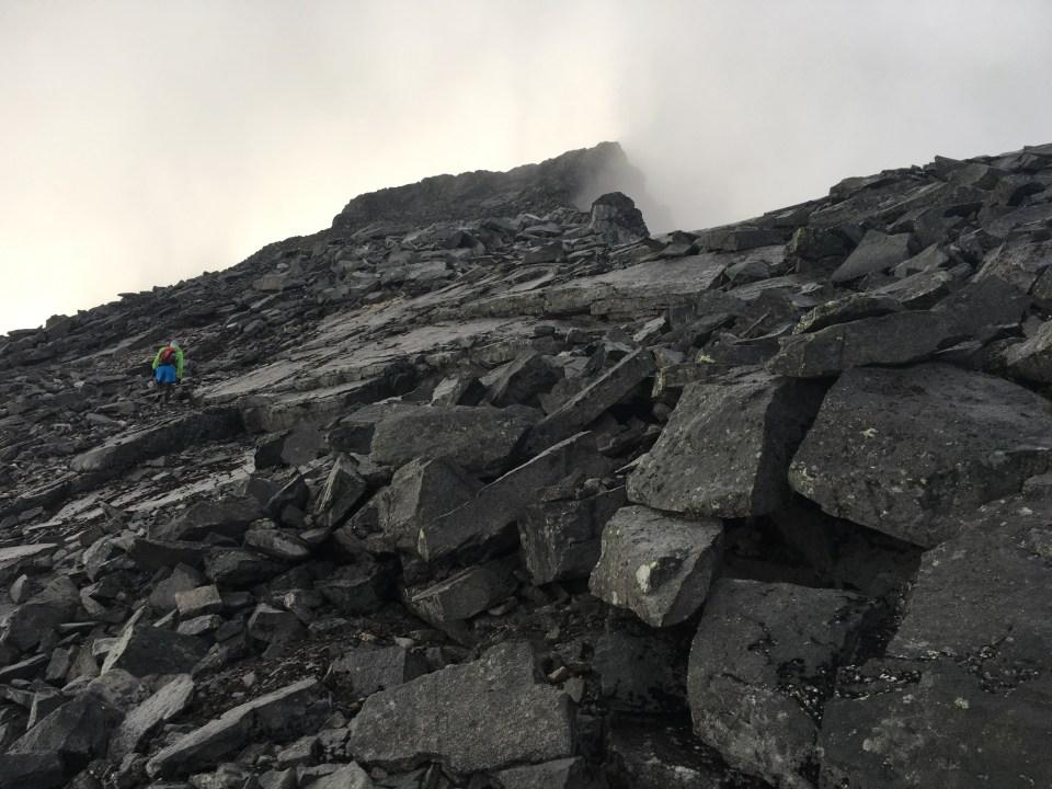 Vägen upp mot Sarektjåkkås stortopp