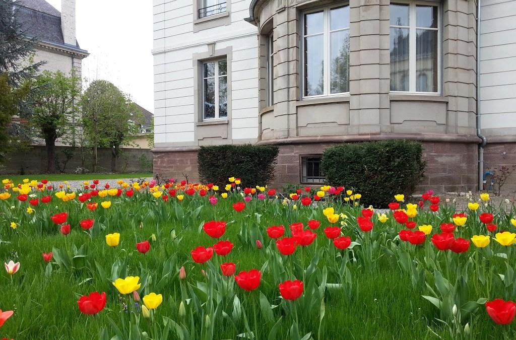Le jardin villa lyane for Les jardins de la villa booking