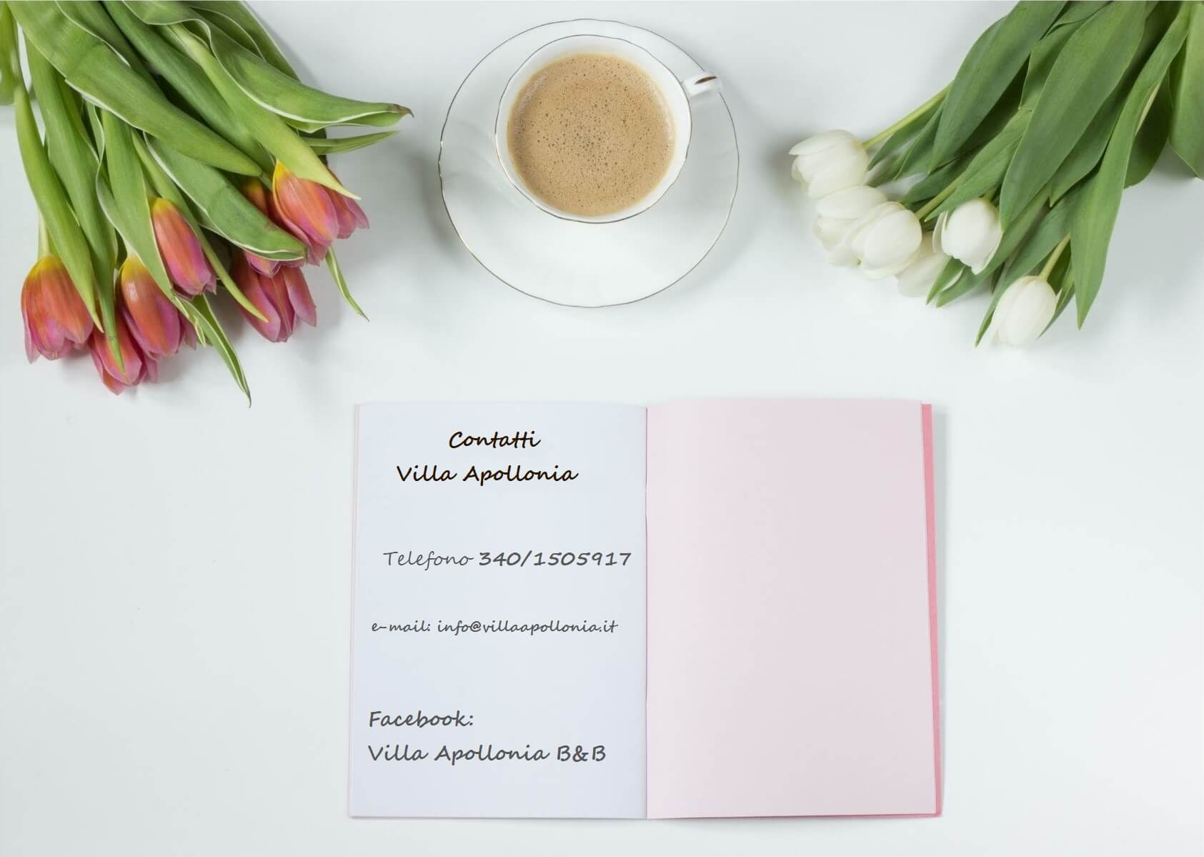 Villa-apollonia - Contatti