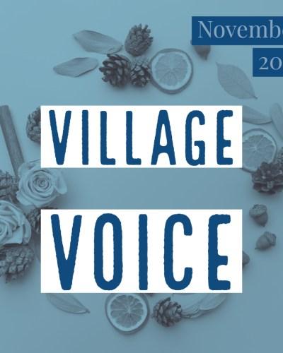 Village Voice: November 2018
