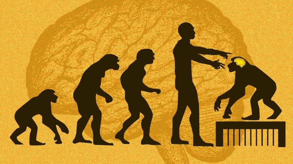 半人半獸的「奇美拉」(Chimera)不再是神話──科學家成功培植「人猴」嵌合體胚胎。這方面的研究,對人類是否利多於弊?