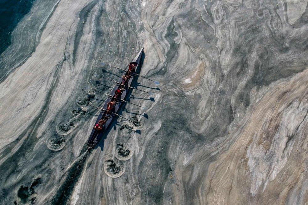 土耳其的「海鼻涕」為禍:濃稠黏液吞噬了海洋。這場生態災難是怎麼形成的?