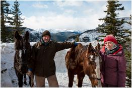 Horses Of McBride