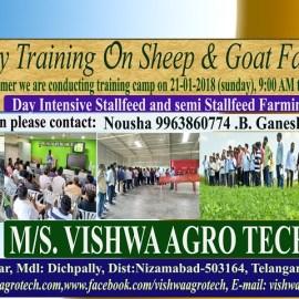 Goat Farming Training by Punyashloka Ahilyadevi Maharashtra Mendhi