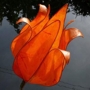 Chetwood Faith Orange
