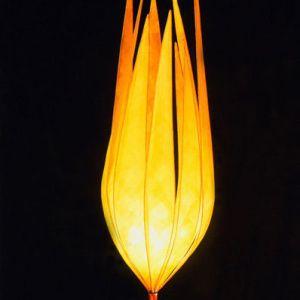 chetwood-firelight