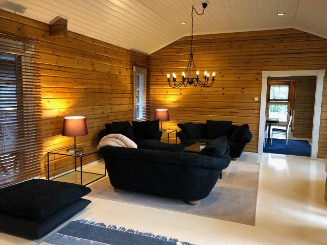 Olohuone. Living room.