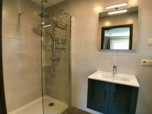 badkamer met WC, wastafel en inloopdouche.