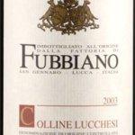 Tour degustazione vino Fubbiano