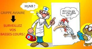 La grippe aviaire s'étend, soyez très vigilants !