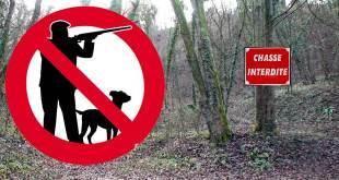 Arrêté interdisant la chasse sur le territoire de la commune de Verberie.