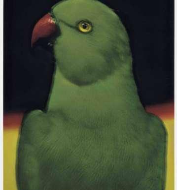 perroquet-de-sarah-moon