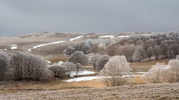 Pallier Pierre - Fin d'hiver sur l'Aubrac