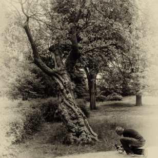 Laurent Chaput - Vieux Villepreux - adepte d'une secte étrange se prosternant devant un arbre totem