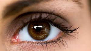 Eye Diseases: Top 7 Tips in Maintaining and Preventing Blurred Vision
