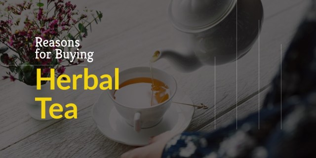 Woman pouring herbal tea in a white cup. Explains the reasons for buying herbal tea