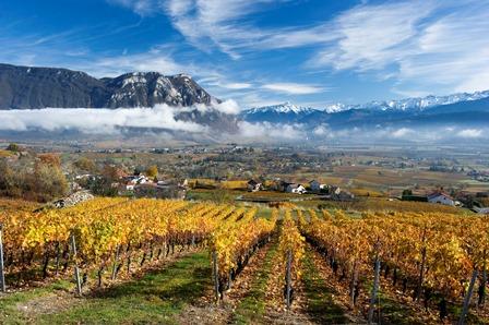 Quelles sont les meilleurs vins de Savoie ?