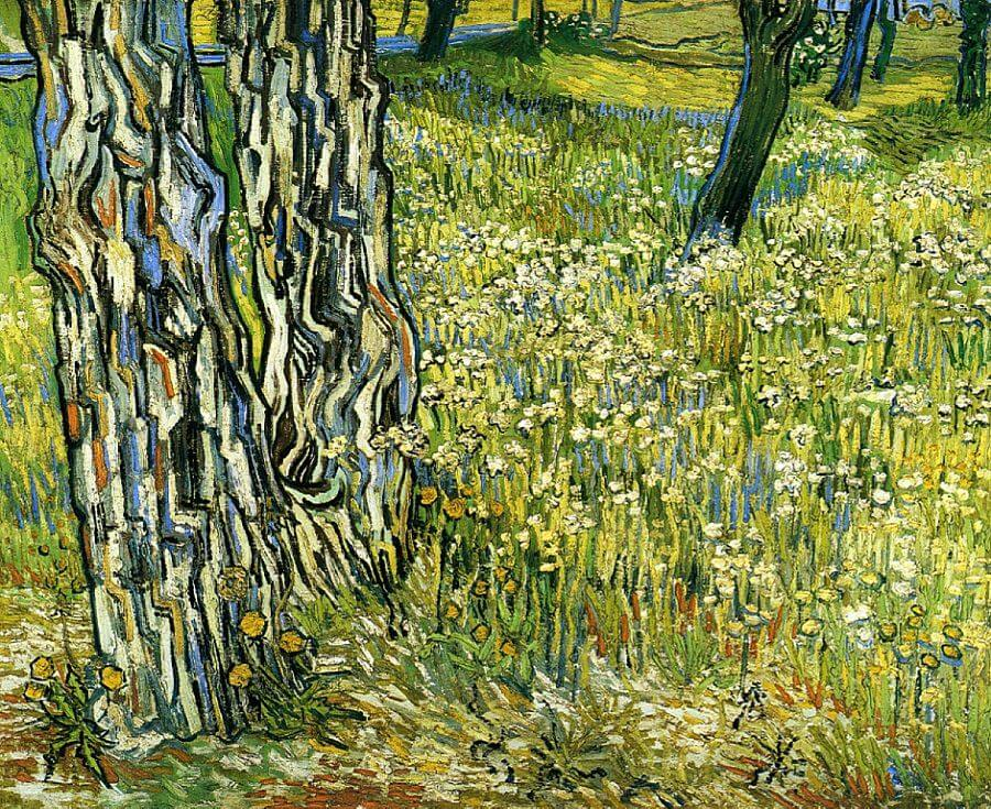 Image result for Vincent van Gogh, Tree Trunks in the Grass