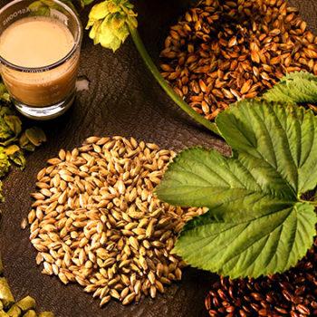 ingredienti-della-birra