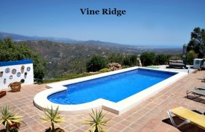 Vine Ridge Apartment