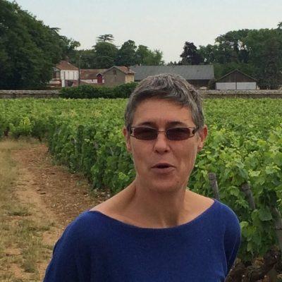 Domaine Jane et Sylvain Raphanaud - Vinibee