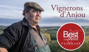 Jean-Yves Bardin - Vignerons d'Anjou - Vinibee