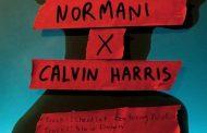 Normani por partida doble y junto a Calvin Harris, en 'Checklist' y 'Slow Down'