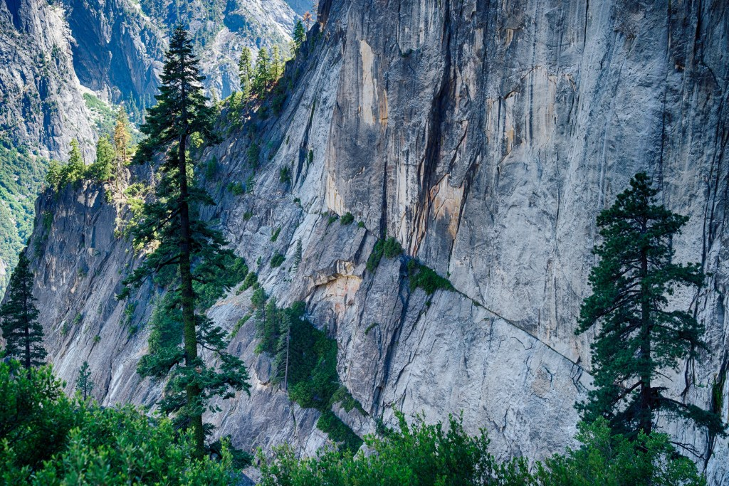 Yosemite, Travel Photography, U.S.A, Vin Images