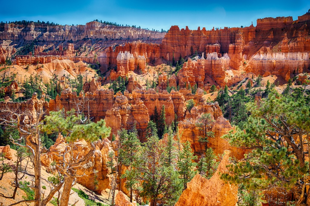 Bryce Canyon, Travel Photography, U.S.A, Vin Images