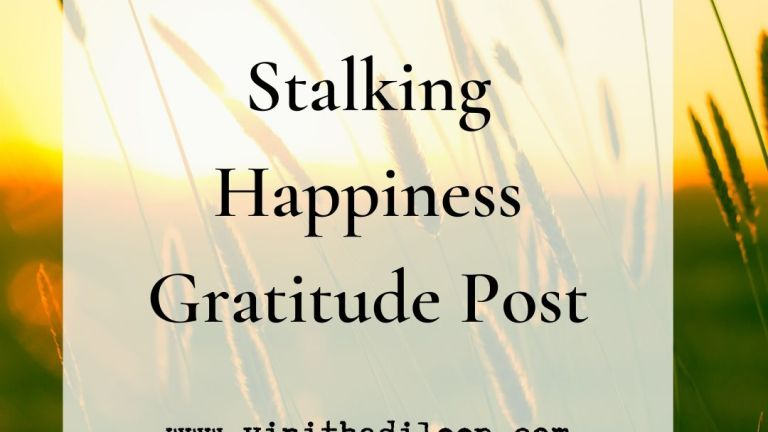 Stalking Happiness – Gratitude Post