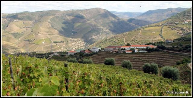 Eufemia Port Wine Douro