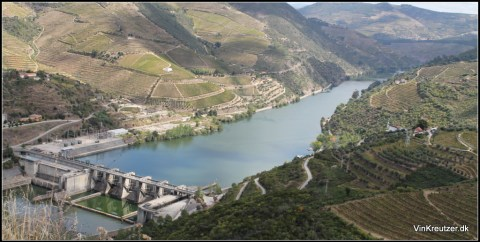 Douro port wine