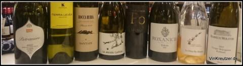 Winelover vine