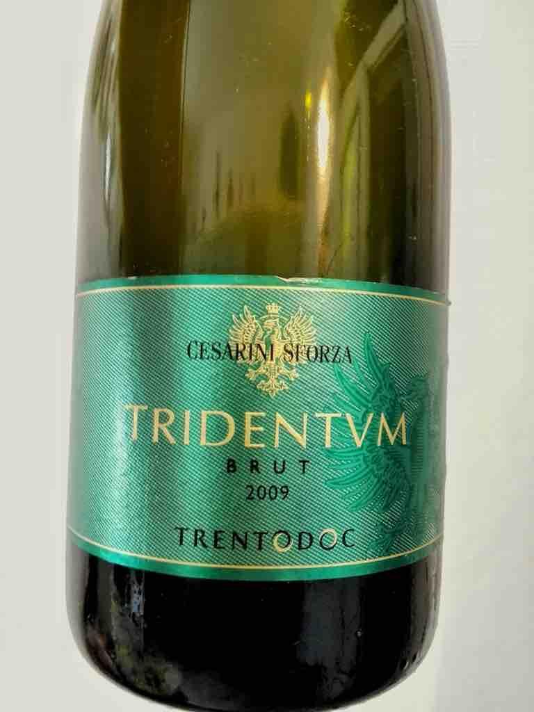Cesarini Sforza Tridentum Brut