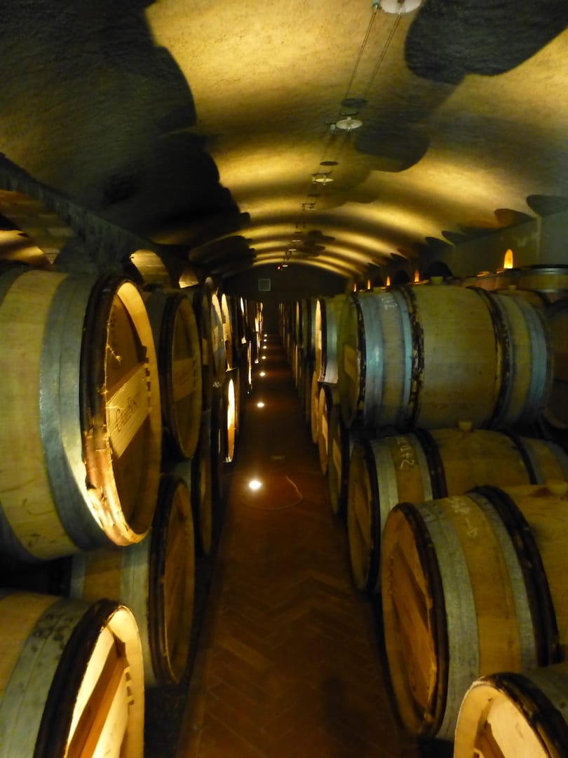 Come si fa il vino: barriccaia
