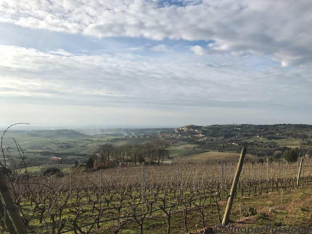 Ot wine Toscana vigneti