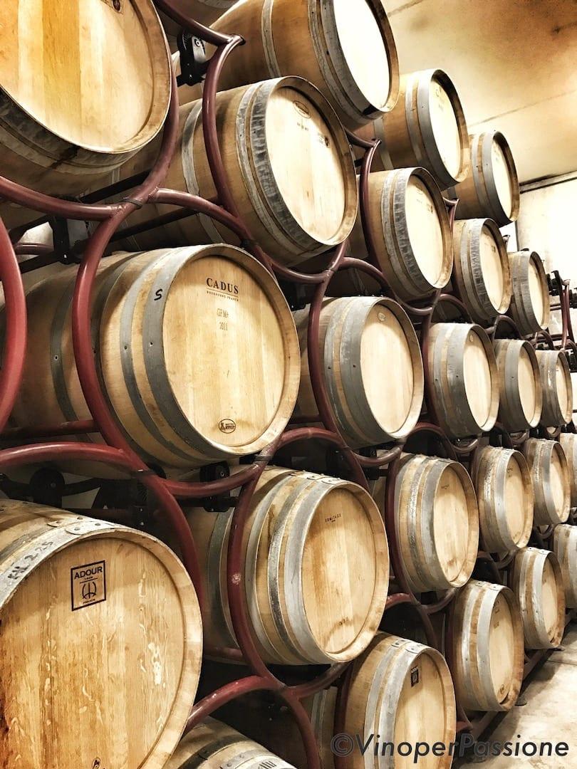 Barriccaia OT wine Toscana
