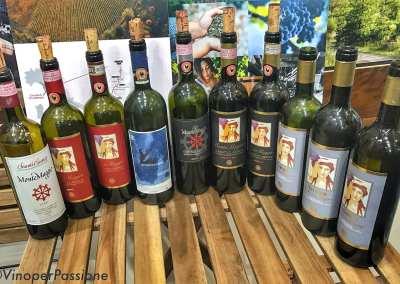 Fattoria Montemaggio al Vinitaly