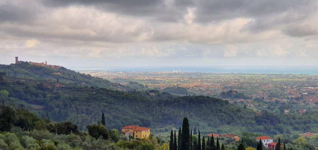 Panorama dei Colli di Luni con Castelnuovo Magra sullo sfondo