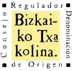 logo bizkaiko