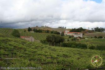 Wine Up en Pazo Baion