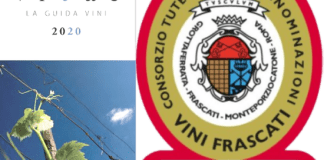 Cnsorzio Vini Frascati su Vitae 2020