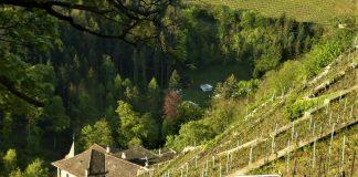 Canton Vaud in Svizzera