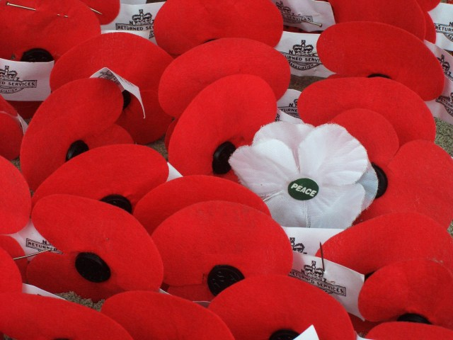 Controversies over Poppies: Another Pop of Colour on Our Lapels