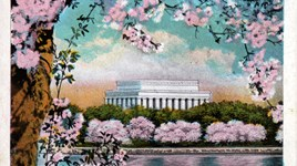 Vintage Postcard of the Cherry Blossoms in Washington DC