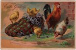 Easter Chicken Family Vintage Postcard