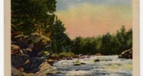 White Water Rapids Vintage Postcard