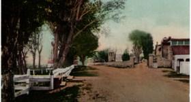 Vintage Postcard of a Desert Road near Carson City Nevada