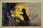 Cat Warning the Owl Vintage Halloween Postcard